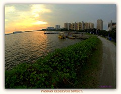 Sunset scene @ Pandan Reservoir. (cpark188) Tags: sunset landscape picasa fisheye ultrawideangle pandanreservoir zuiko1442mm olympuse620 samyangfisheye rokinon8mm