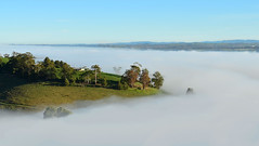 Island in the sky (phunnyfotos) Tags: morning winter cloud house mist weather misty fog clouds rural spur nikon day farm hill foggy australia victoria valley vic hilly gippsland morningfog yarragon warragul strzeleckiranges westgippsland d5100 strzeleckis yarragonsouth nikond5100 phunnyfotos gippypics