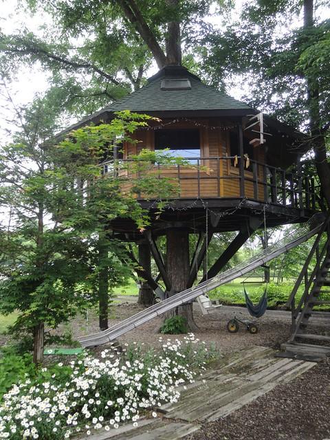 北海道鹿追町で待望の三部牧場ハルニレのツリーハウスへ宿泊するの写真