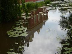 reflection (André-DD) Tags: park castle germany deutschland saxony sachsen schloss badmuskau fürstpücklerpark neueschloss
