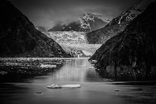 Melting Cold - Alaska Glacier