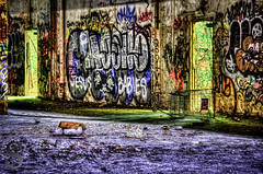 Urban Decay in Milford- (Singing With Light) Tags: art trash photography graffiti paint pentax urbandecay ct september abandonded milford 29 k5 2013 singingwithlight singingwithlightphotography