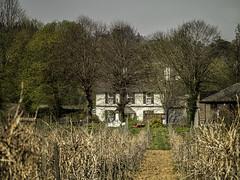 Farm house (Alan Fife) Tags: farmhouse peepingthroughthetrees