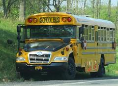 Goshen CSD #259 (Hudson Valley Bus Photography) Tags: school bus vision bluebird schoolbus goshen goshencentralschool