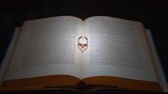 0642 (Hobbyfotografie Rebekka) Tags: buch licht ring schatten