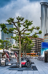 One Fine Day... (oliemackeral) Tags: trees clouds buildings germany frankfurt bikes sidewalk trainstation colorsofthesoul