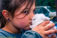 kids with bunnies-11-2 (Meir Jacob |  ) Tags: pets bunnies kids innocence meirjacob tripsforphotographers kidswithbunnies