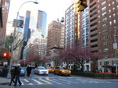 IMG_1787 (fuzzywomack) Tags: nyc newyorkcity newyork manhattan day113