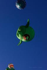 Balloon Fiesta 2016 | Standing Under A Jedi, I Am | Morning Ascension, 07:06 AM (Facundity) Tags: albuquerqueinternationalballoonfiesta aibf balloonfiesta2016 balloonfiestapark albuquerque newmexico hotairballoons yoda lucasfilm green sky blue pov lookingup ef70200mmf4lisusm canon5dmkiv jedi outdoor photography