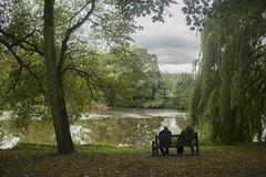 Kirkstall Abbey (montenaya) Tags: leeds naturaleza lago rio agua uk inglaterra amigos banco parque relax tranquilidad libertad kirkstall nikond3300 nikon