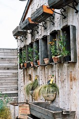 Garden Organization with Crates (irecyclart) Tags: pots potting