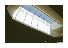 (Daiku_San) Tags: film ishootfilm 35mmfilm colorfilm slidefilm contaxg2 carlzeissplanart352 kodakelitechrome100 epsonv750mpro