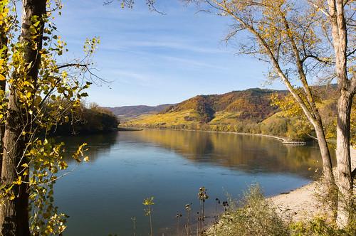 Friedliche blaue Donau