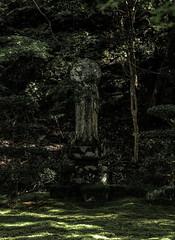 1610_1364 (mrittenhouse) Tags: kyoto ohara sanzenin buddha deity japan moss nature reverence