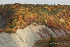 IMG_8964 (Sally Knox Sakshaug) Tags: letchworth state park new york autumn fall bright sunshine grandcanyonoftheeast portagecanyon october outdoors nature scenic pretty beautiful calm peaceful serene leaf leaves orange yellow red brown tree trees bush forest woods wood bark log trunk rock rocks grey gray shale cliff mountain valley gorge ravine river genesee limestone
