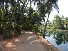 Villages Near Calicut Kerala Photography By CHINMAYA M (8)