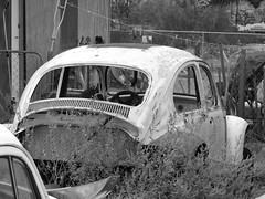 The Old Volks Home (23M) - 24 October 2016 (John Oram) Tags: vw volkswagen frenchs yuccavalley theautoclinic vwbeetle mono bw 2002p1140317m