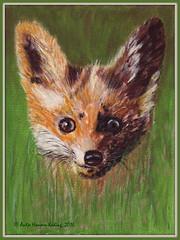 Fuchs im Gras - Fox in the Grass (antje whv) Tags: fuchs fox tiere animals kunst art acryl malerei