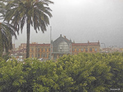hoy, migas (boscani@) Tags: estacion renfe lluvia almeria
