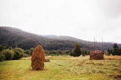 / podne Karpat (suhodolskiy) Tags: carpathians ukraine travel mountains landscape bukovel       kodak colorplus 200 film filmphoto nikon n90