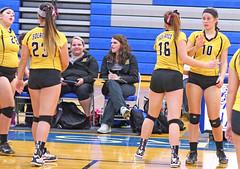 IMG_10409 (SJH Foto) Tags: girls volleyball high school lampeterstrasburg lampeter strasburg solanco team tween teen east teenager varsity substitution sub rotation