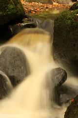 Hints Of Autumn (Derbyshire Harrier) Tags: autumn longshawestate longexposure 2016 burbagebrook nationaltrust moss derbyshire peakdistrict peakpark waterfall leaves padleygorge boulders gritstone