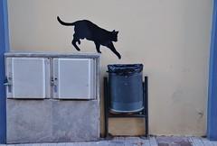 La mala sort. (josepponsibusquet.) Tags: graffiti gat gatnegre gatonegro malasort malasuerte supersticions ripoll ripolls catalunya catalonia catalua dibuix pared dibujo art arte arturb arteurbano gato