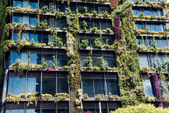 Vertical gardens are part of Central Park, Sydney (Merrillie) Tags: apartments plants australia vertical city centralpark sydney newsouthwales nsw urban highrises gardens greenery architecture green livingwall windows broadway building