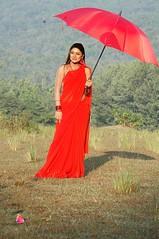 South Actress Deepika Das Hot in Red Sari Photos Set-5 (4)
