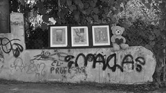 Teddy Bear (Angel Xavier Viera) Tags: teddybear peluche oso street art arte expresión calle riopiedras fence verja urbana urbandecay ruins graffiti