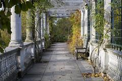 Pergola Gardens (Sonya Gencheva) Tags: pergola london parks hamsteadheath garden autumn leaves architecture columns romantic beautiful