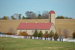 Conowingo & Lancaster 071 (dena429) Tags: barn farm silo field whitefence lancastercounty pennsylvania agriculture farming