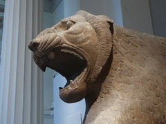 Lion of Nimrud (Aidan McRae Thomson) Tags: britishmuseum london ancient statue lion sculpture assyrian nimrud mesopotamia