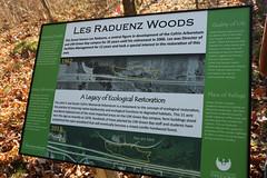 Les Raduenz Woods-12