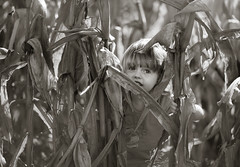 Corn Maze (Philocycler) Tags: child corn cornmaze indiana fall smile happy light canon canon5dmarkiii ef85mmf18