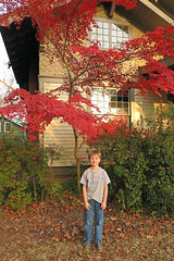 mapleporchcar (babyfella2007) Tags: jason taylor myrtle beach broadway ropes course wonder works carson grant car flag usa maple tree porch movie movies sing statue liberty restaurant winnsboro house where wild things roam dance wal mart dancing boy young child michelle eat eating sc south carolina