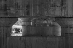 Tista, Rangpur, Bangladesh || 2016 (royudoys) Tags: tista bridge canon eos 60d 18135mm zoom lens landscape rule third man cart river