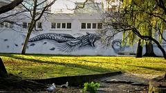 Noir / Liège - 25 nov 2016