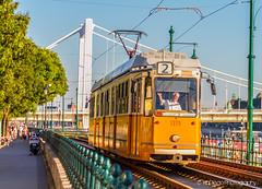 Budapest | TrinDiego (TrinDiego) Tags: budapest buda pest europe european candid street city trindiego catchy colour hungary hungarian