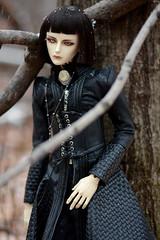 003 (Kumaguro) Tags: bjd dollshe husky dollshehusky dollsheoldhusky autumn earlywinter forest dark gothic