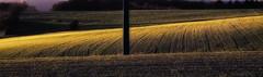 Fields (a.penny) Tags: felder idsteiner land panorama fuji finepix fujifilm x10 apenny