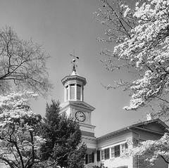 Shepherdstown, West Virginia (Tony_Roman_Photography) Tags: school trees spring blossoms clocktower wva copyrighted photobytony bytony tonyroman shepherstown tonyromanphotography tonyromanphoto imagebytonyromancopyrighted copyrightedbyanthonyproman