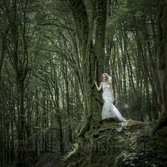 Enchanted (_ justintheframe_) Tags: trees forest woodland moss woods nikon weddingdress tonemapped trashthedress d300s justintheframe