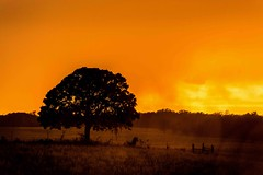 storm sunset (voca dave) Tags: sunset oklahoma weather ok caney davidhardy daveslifestylephotography
