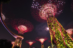 Garden by the Bay (Ready2Snap?) Tags: trees garden bay singapore ultrawideangle