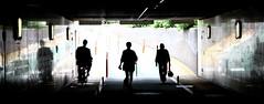 Underpass (Aaron Webb) Tags: bicycle japan underpass tokyo october pedestrian   minato   pedestrianunderpass