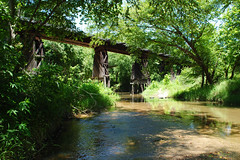 A Thousand Shades of Green (Patrick Feller) Tags: green river birches shade union pacific railroad railway train bridge trestle timber loop 494 new caney creek montgomery county texas summer leaves running water pontist united states north america