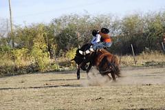 DSC_0766 (jaramillosergio) Tags: argentina caballo gauchos jujuy monta doma jineteada sansalvadordejujuy titovelazquez tropillalaendiablada