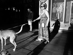 Dogs (unoforever) Tags: street light people woman man luz dogs monochrome photography calle mujer shadows gente streetphotography streetphoto perros sombras hombre fotografa spsalon upsp spnc spmonochrome unoforever