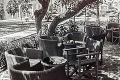 _MG_2034_bw (Shifteye) Tags: sun beach beauty clouds coast paradise unitedkingdom flames flame drinks poi medina zachary cranium mombasa firepoi turtlebay firesticks ngina flamingdrinks watamu shifteye aplmtrees holidaybar zacharysaitoti jeffkegeri craniumink kenyanbeauty shifteyephtography medinapalms agnesnjoroge nginawest flaminshots kenaynparadise